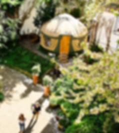 Green Peace Yurt