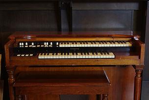 IMGP2505 - organ.jpg