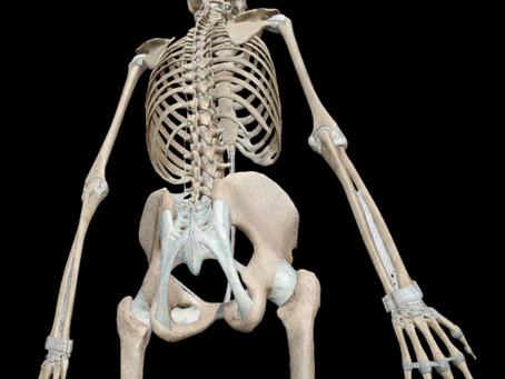 ¿Qué especialista puede operarme la columna? Cirugía Ortopédica vs. Neurocirugía