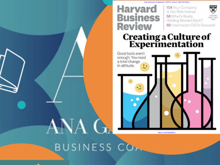 CRIANDO UMA CULTURA DE EXPERIMENTAÇÃO (Harvard Business Review)