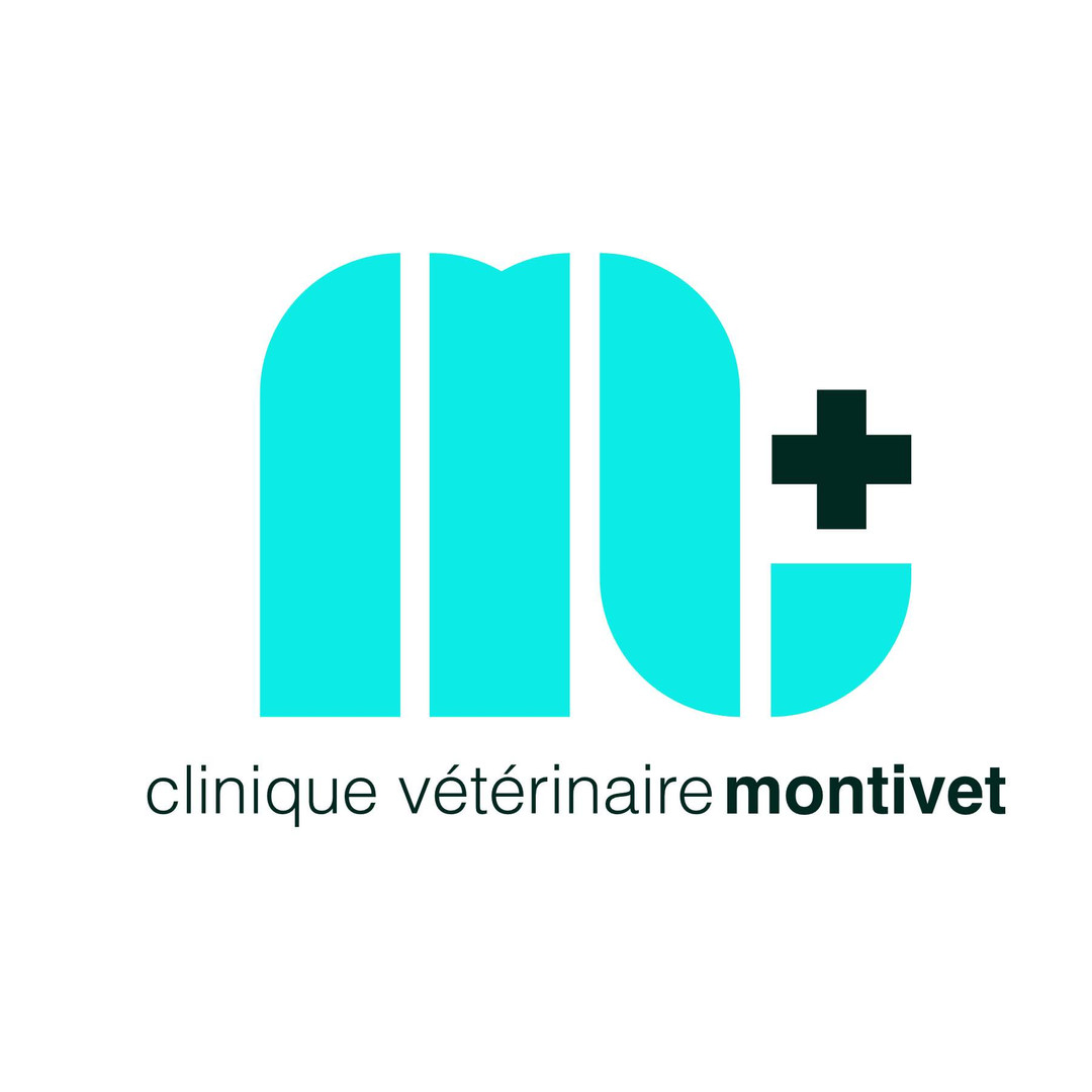 Clinique Montivet