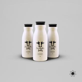 "Logo concept ""La vache Sally""."