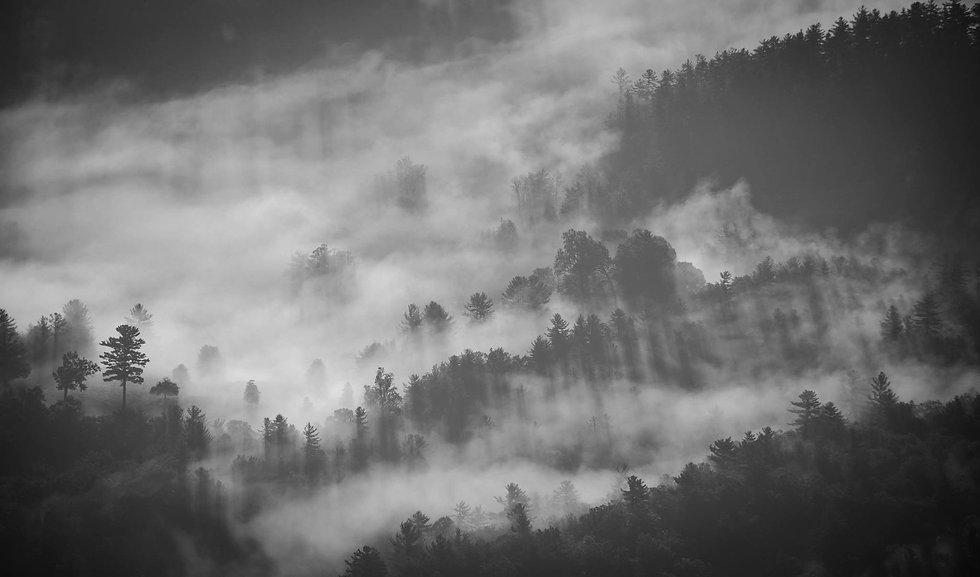 foggy-1149180_1920.jpg