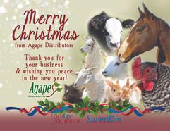 christmaspostcard2019.jpg