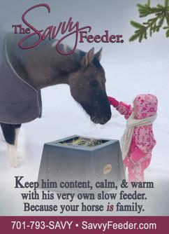 Horse&RiderSavvygiftguidead.jpg