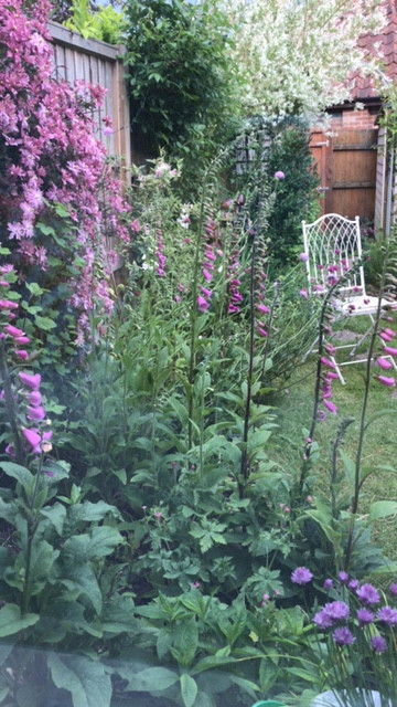 garden and chair.jpeg