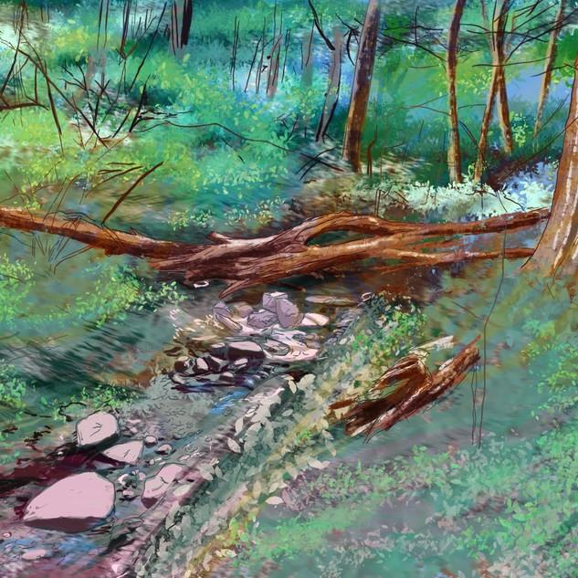 Childhood Forest