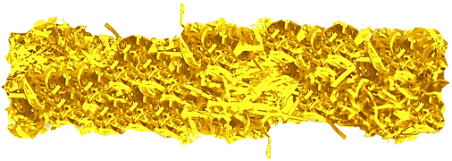 Yellow 3.png