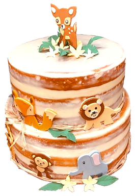 Naked-Baby-Shower-Cake-4_edited.png