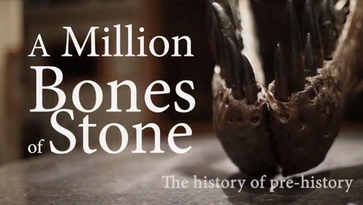 Million Bones of Stone Header.jpg