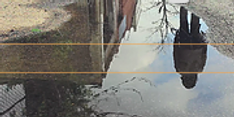 Screen Shot 2020-02-20 at 3.40.55 PM.png