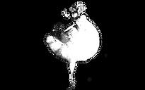 Classic Ballet School logo