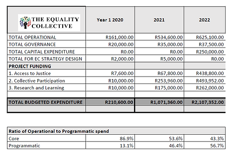 Equality Collective budget (2).PNG