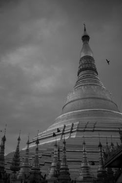 Shwedagon Zedi Daw