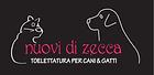 Nuovi di Zecca Trento