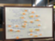 Affinity Diagram 2.HEIC