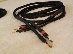 Biwire in Black BFA Amp Connectors