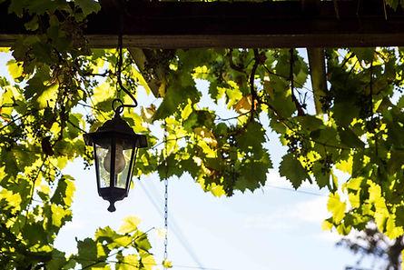 Zum Bergschlösschen Straßgräbchen - Restaurant & Biergarten