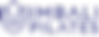 IP_Logo Full.png