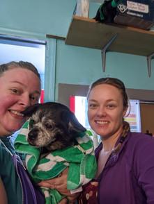 WSW Volunteering at SPCA