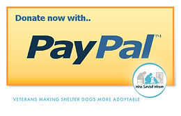 WSW-DonationGraphics-PayPal.jpg