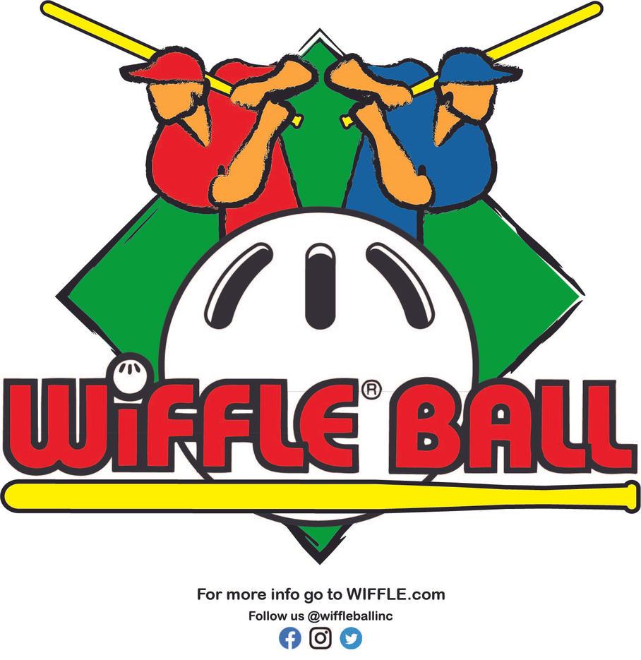 WIFFLE BALL Banner