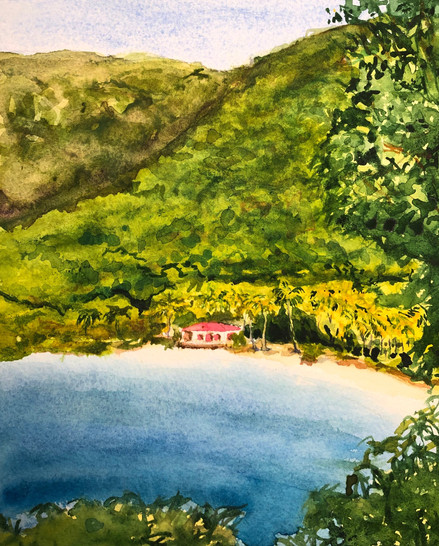 Maho Bay before the Hurricanes , St John USVI