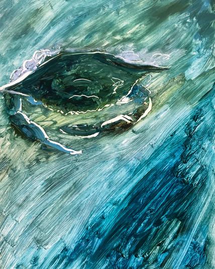 Water Crab