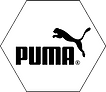 Puma Hexagon.tif