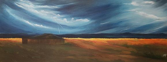 Field by Mita Visrolia