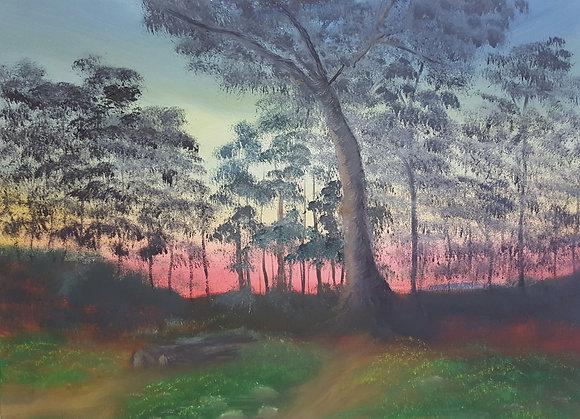 Sunset by Jillian Warrington