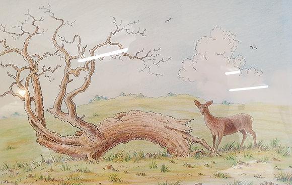 Deer Park by Gordon Newton
