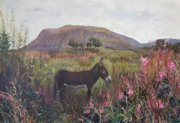 Tawley Donkey by Lorna Hicks