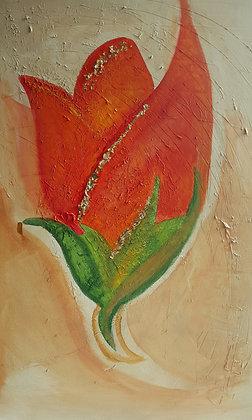 Summer Flame by Shazia Osman