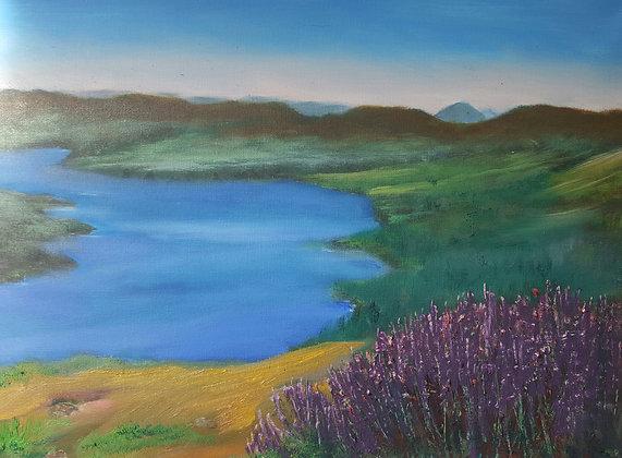 by Jillian Warrington Oil on canvas Size cm 30x