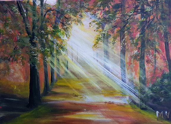 Morning Light by Mita Visrolia