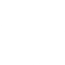 PEACE_VECTOR_W.png