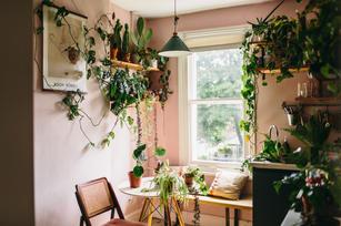 Botanica Studios - At Home Session-22.jp