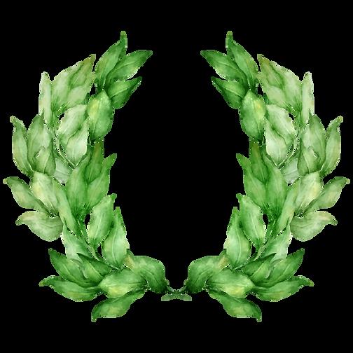 Leaves Laurel
