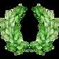 Листья Лорел