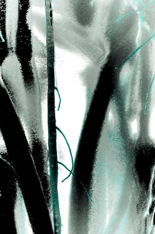 Title: Wash - Series: Banyon