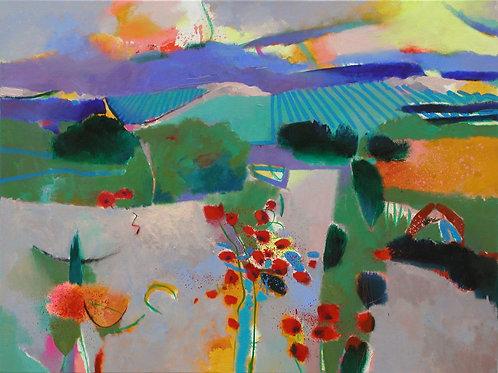 Languedoc Poppies