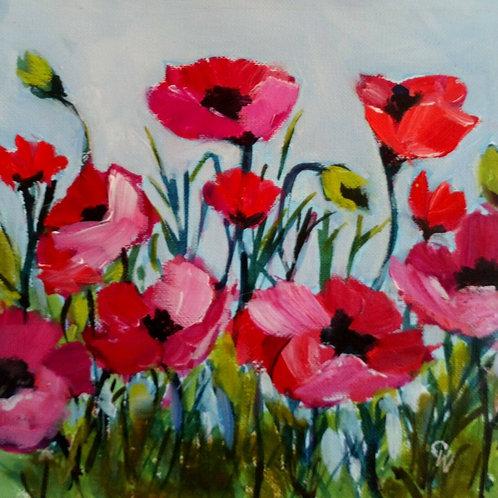 Poppies by Carol West