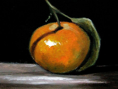 Original still life oil painting 'Clementine' by Terry Wylde