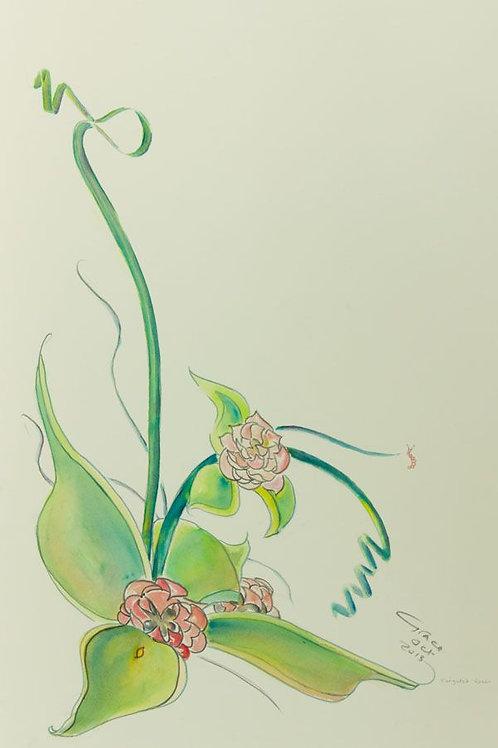 Grace Rice - 2013 Watercolour, Floral Still Life