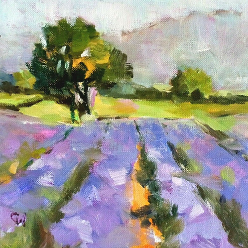 Original Oil Painting Impressionistic - 'Fields of Lavender'''