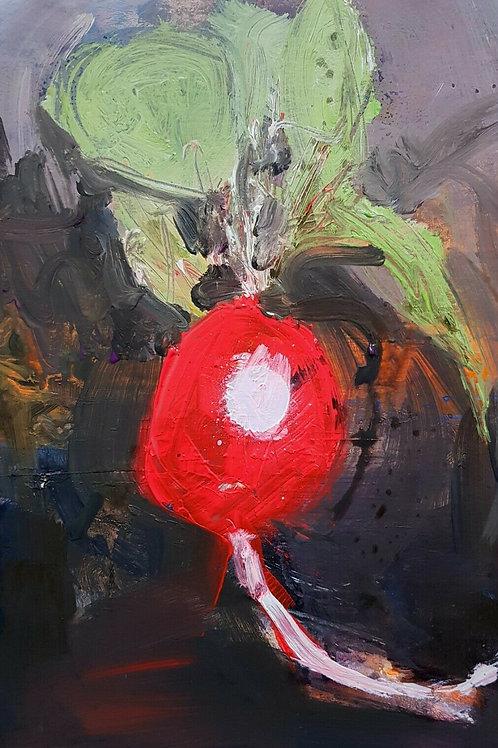 Radish by Paul Mitchell