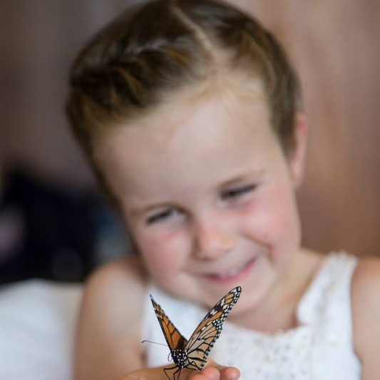 Lily and the butterfly .jpg