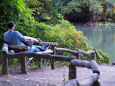 Relaxation In Central Park