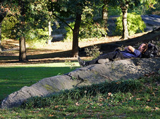 Serenity - Central Park, NYC